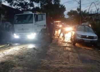 Porto Alegre   15.jan.2019   Árvore caída na avenida Icaraí, zona Sul de Porto Alegre.   Crédito:  EPTC