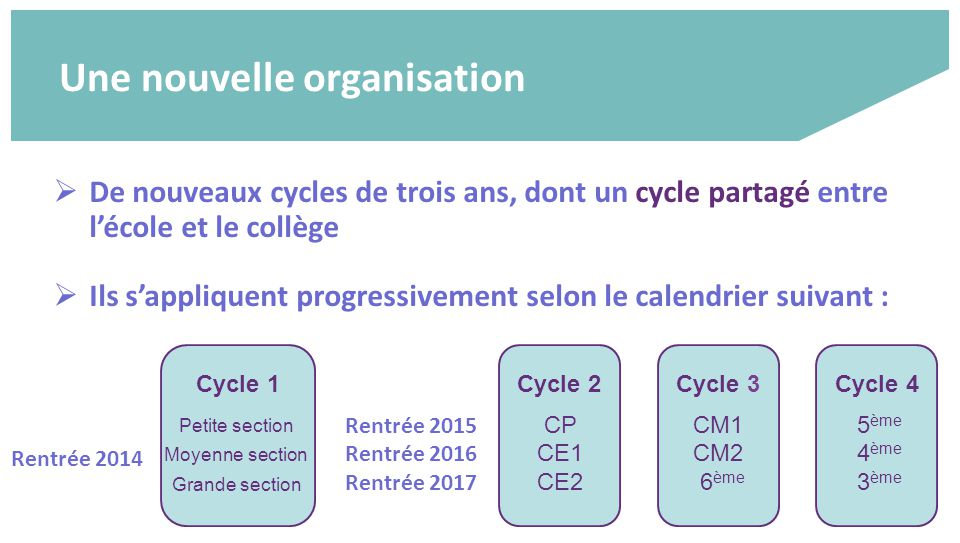 cycles_scolaires3