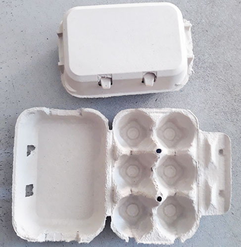 Contenitore porta uova