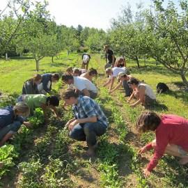 Project Profile: Cooperative Farming Research