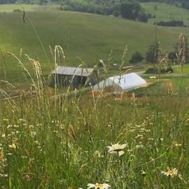 Land Access & Racial Equity: Creating an Agrarian Commons