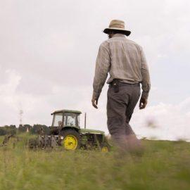 Using Multiple Community-based Land Trusts to Save Farmland