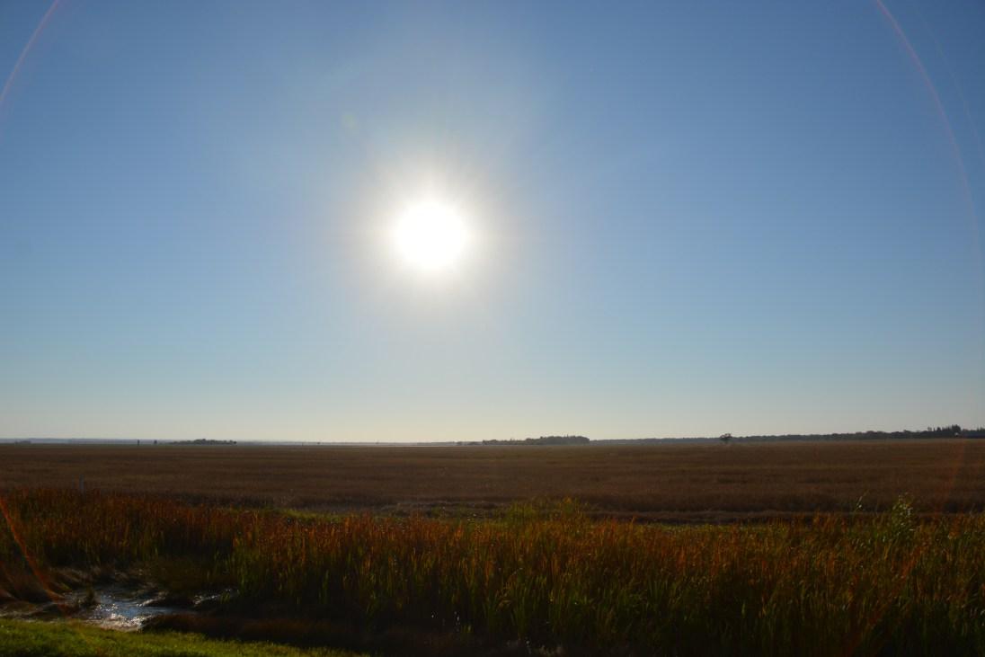 Prairie driving