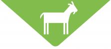 AgriFarmProducts_GoatIcon