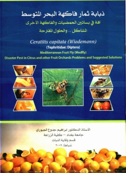 Mediterranean Fruit Fly 2007