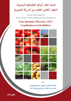 Tuta absoluta Brochure Composed by Al-Jboory 2009