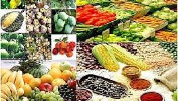 41 Top Agricultural Business Ideas with Small StartUp