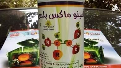 Photo of الاحماض الامينية للنبات .. مِعطفُ الشتاء ووزير الدفاع المؤقت