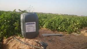 حمض الفوسفوريك فى الزراعة