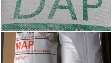 Photo of ما الفرق بين الماب MAP والداب DAP ؟ ومعدل استخدام كلاً منهما