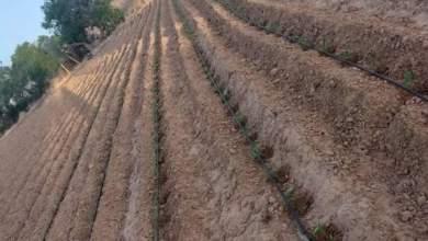 Photo of كيف تصنف تربة أرضك الزراعية وما هي أنواع التربة الزراعية ؟