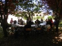 evento RIFUGIA-TI NELL'ALBERO DELLA VITA IN BIGATTERA PER AGRICOLTURA SOCIALE giugno 2017