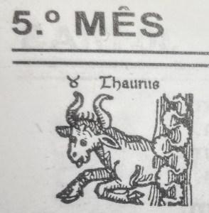 borga-agua-maio-touro