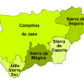 Mapa con las denominaciones de origen del olivar en jaen