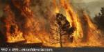 Se prohibe el uso del fuego hasta Octubre