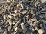 Recomendaciones sobre el manejo de leña en el olivar