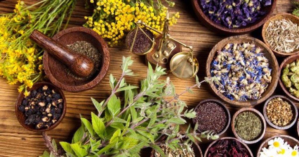 Tienda de Salud Ayurveda Maharishi 100% Natural aquí tendrás acceso a toda