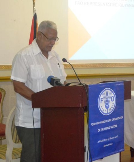 Minister Holder delivering remarks at the FAO Counrty Programming Framework Consultation Brief