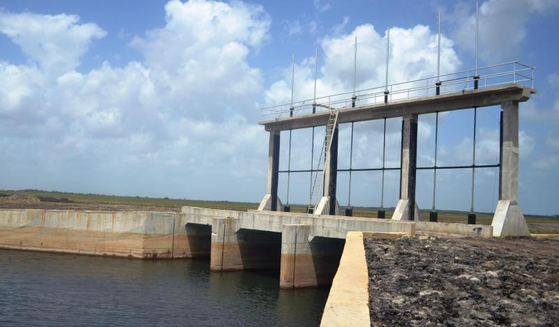 One of Guyana's many functioning water structures