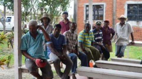 Some of the farmers who operate out of the Hope Estate