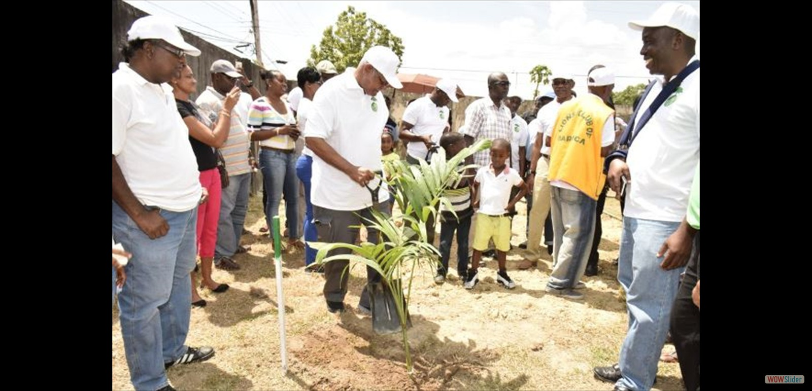 Minister of Agriculture, Noel Holder, planting a tree at the Bartica Community Centre ground, earlier today