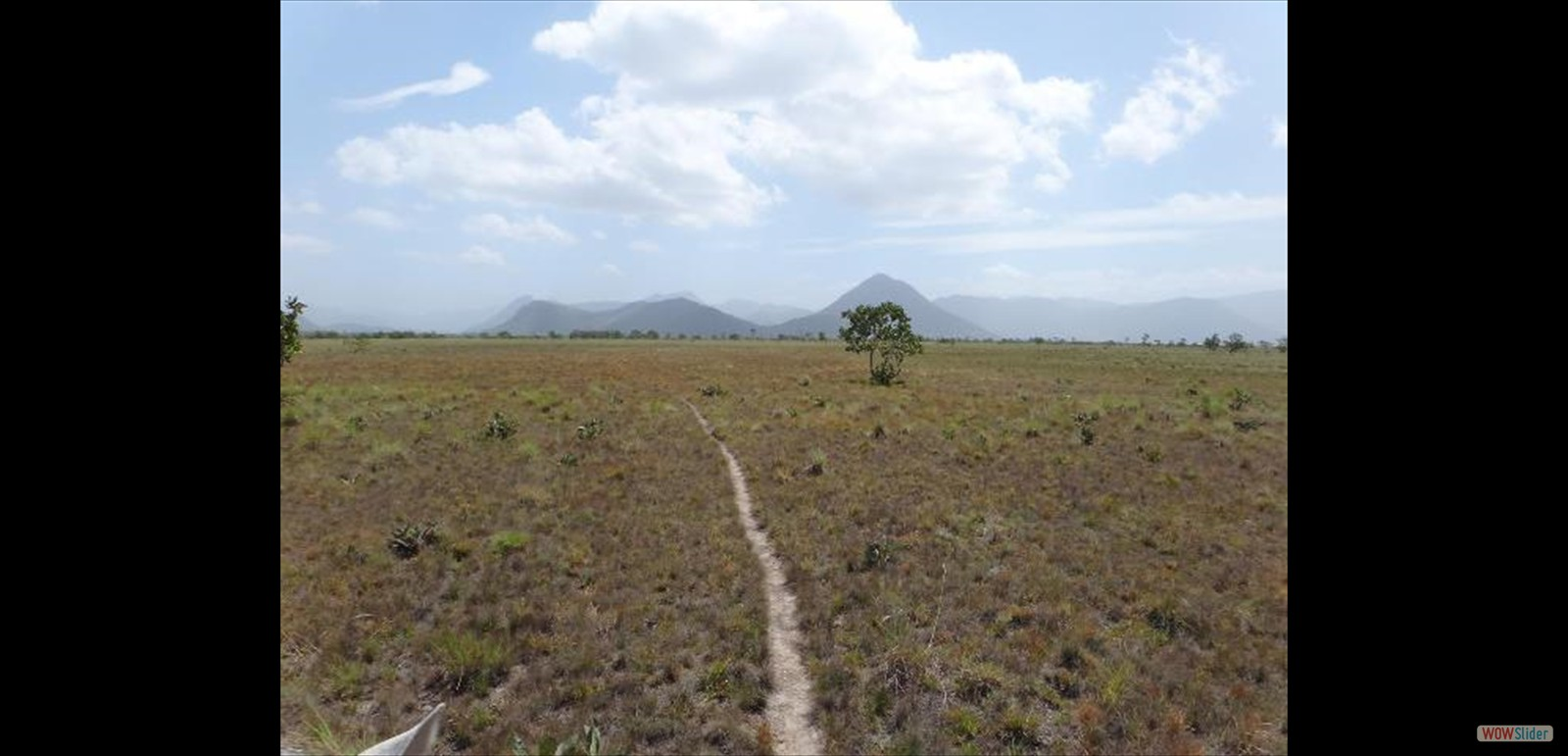 Vast lands in the Rupununi (Pic- South Central Association- Rupununi)
