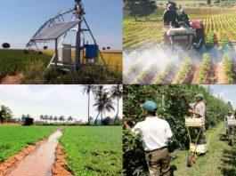 Conception des Projets PPDRI dans le cadre de développement agricole et rural en Algérie