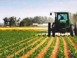 LA POLITIQUE DU DEVELOPPEMENT RURAL ET AGRICOLE EN ALGERIE