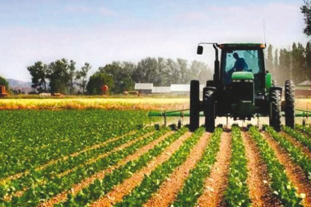 LA POLITIQUE DU DÉVELOPPEMENT RURAL ET AGRICOLE EN ALGÉRIE
