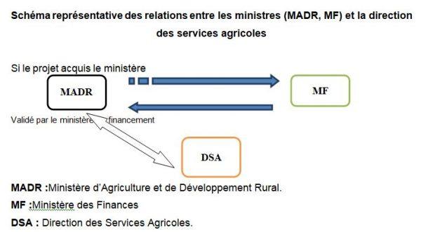 Schéma représentative des relations entre les ministres (MADR, MF) et la direction des services agricoles