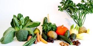 تأثير العوامل البيئية على زراعة الخضر