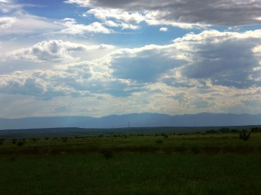 Rocky Mountains in the distance behind green pasture