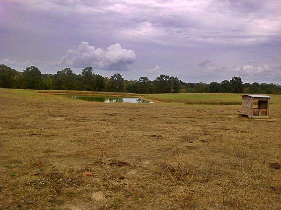 arkansas drought pond dry