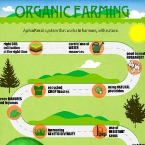 blog-Organic-farming