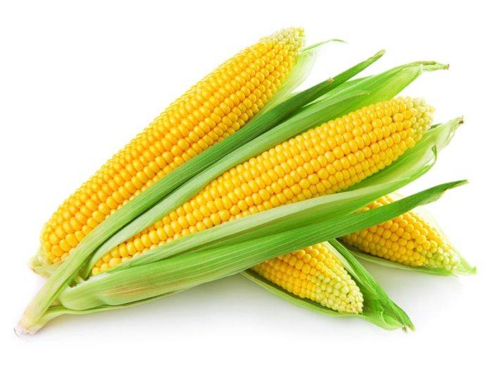 Maize in Pakistan