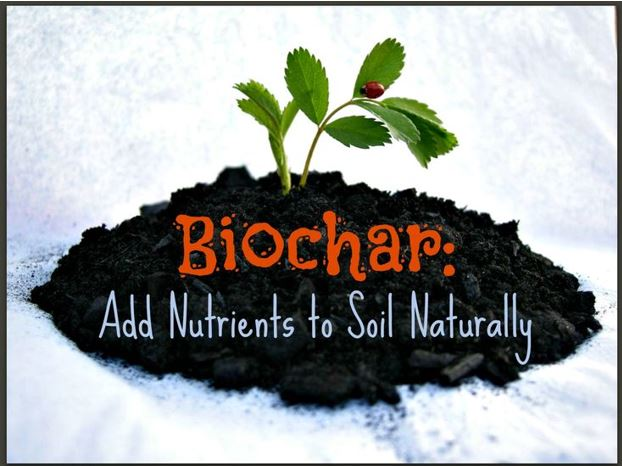 Biochar and soil health: relations and benefits