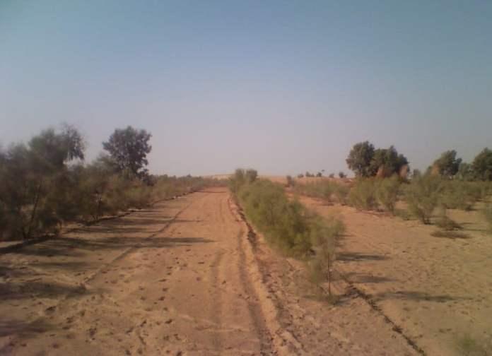 Khagal an economical solution for Arid zones of Pakistan