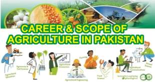 CAREER-AND-SCOPE-OF-AGRICULTURE-IN-PAKISTAN