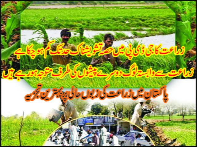 پاکستان میں معدوم ہوتا زراعت کا پیشہ