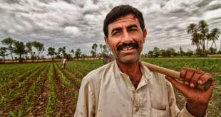 farmers-in-punjab-pakistan