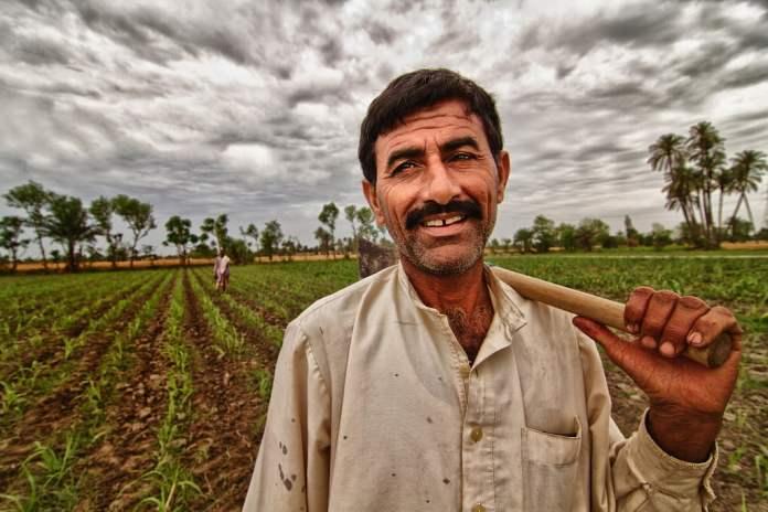 farmers-in-punjab-pakistan