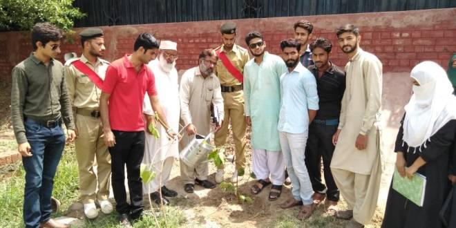 tree-planting-campaign-in-bahawalpur-green-pakistan-green-bahawalpur