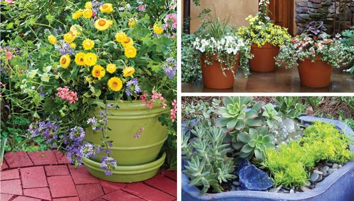 WHAT IS CONTAINER GARDENING?