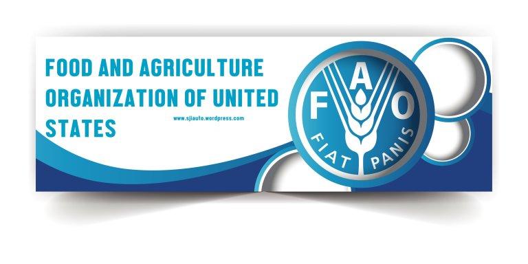 FAO Jobs in Islamabad