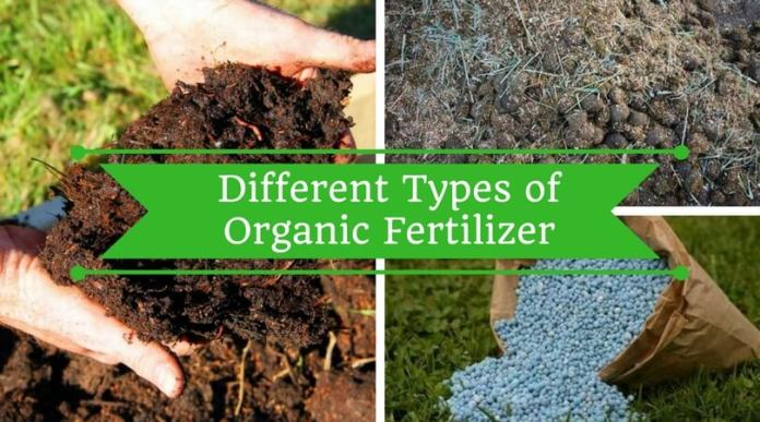 DIFFERENT TYPES OF ORGANIC FERTILIZER FOR YOUR GARDEN