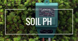 All-about-Soil-pH-its-importance-need-how-to-test-itand-how-to-balance-it-by-saad-ur-rehman-malik