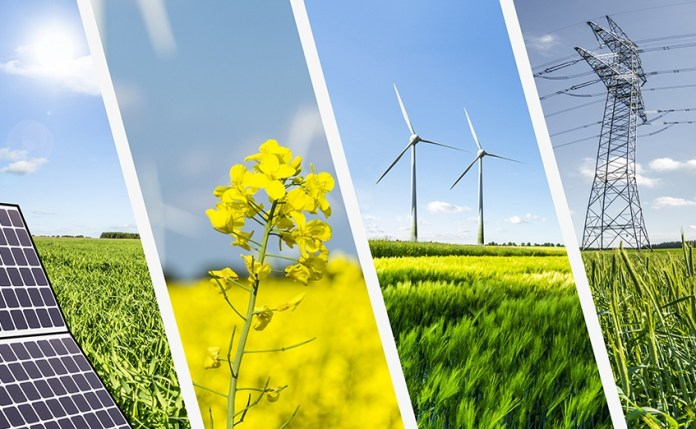 5-Reasons-Why-Sustainable-Agriculture-is-important-by-saad-ur-rehman-malik