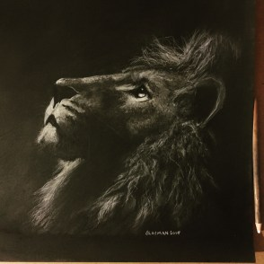 Lion Charcoal Drawing by aLayman