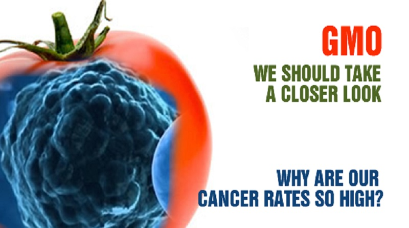 GMOs and Cancer