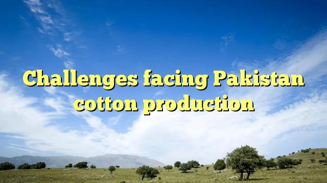 Challenges facing Pakistan cotton production